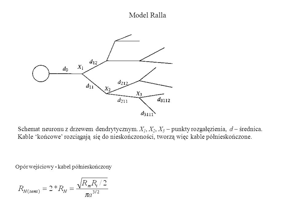 Model Ralla