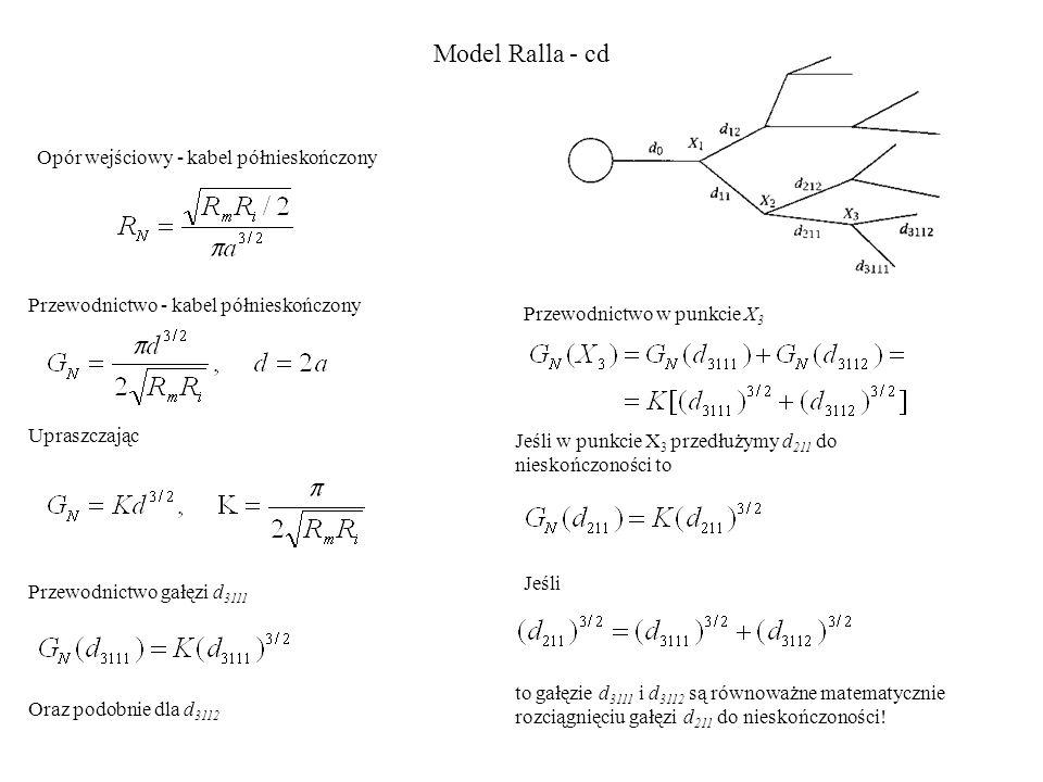 Model Ralla - cd Opór wejściowy - kabel półnieskończony