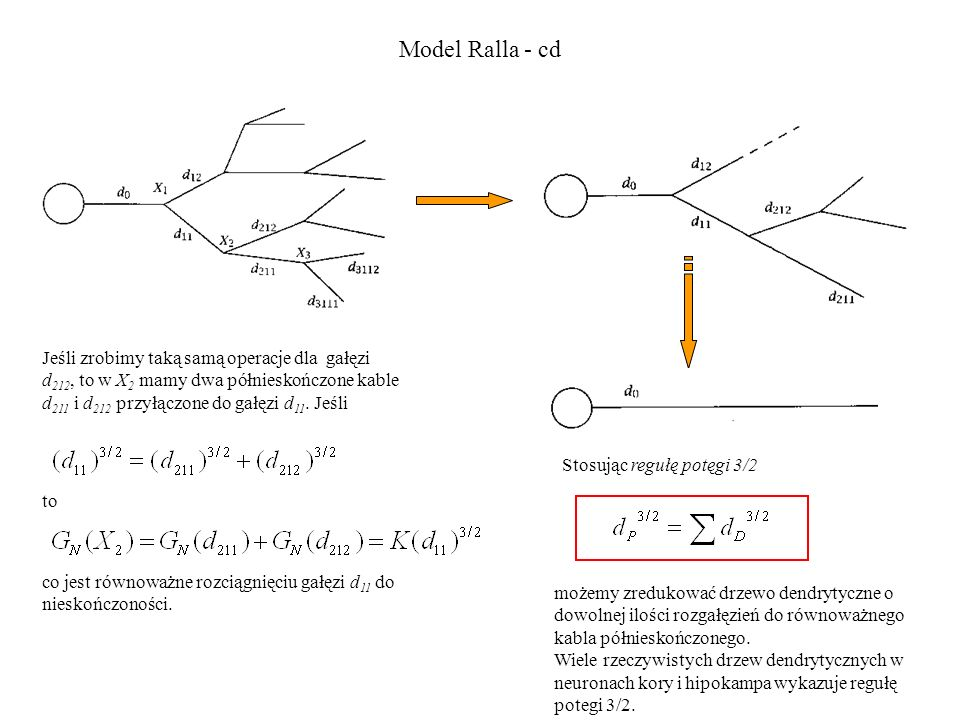 Model Ralla - cd