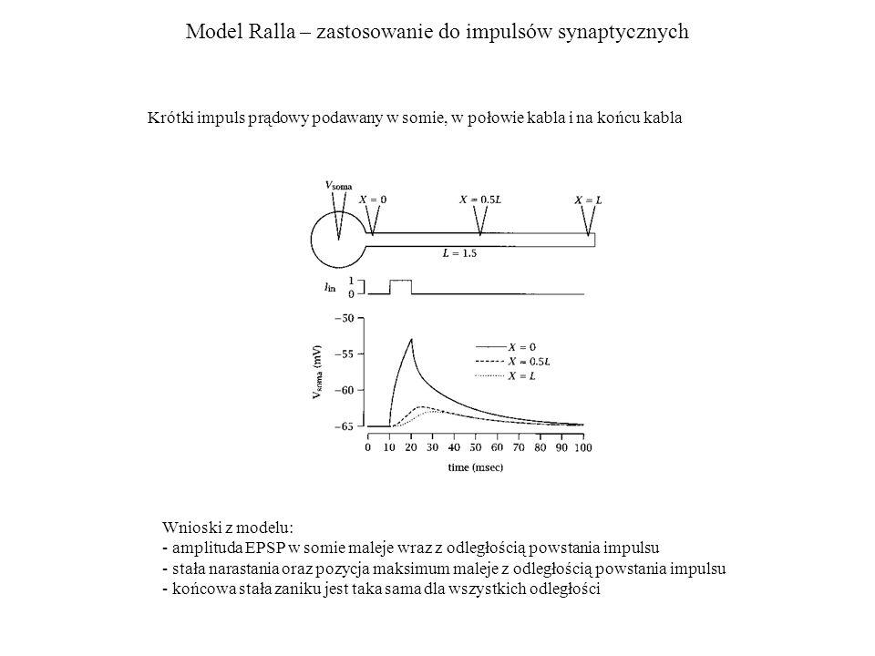 Model Ralla – zastosowanie do impulsów synaptycznych