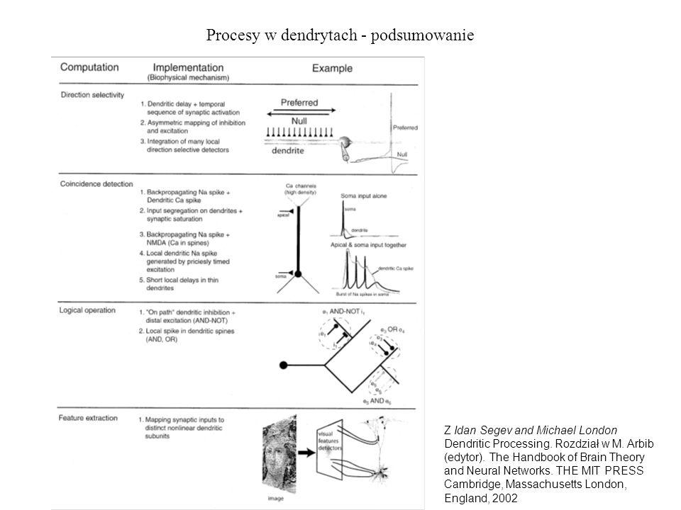 Procesy w dendrytach - podsumowanie