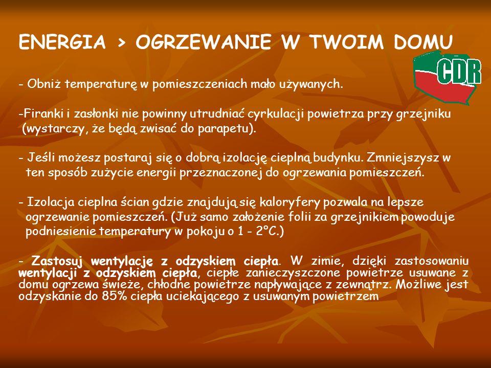 ENERGIA > OGRZEWANIE W TWOIM DOMU