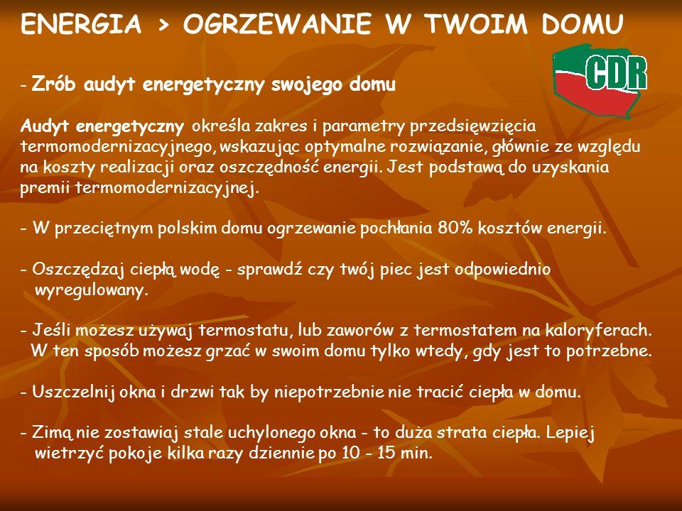 ENERGIA > OGRZEWANIE W TWOIM DOMU - Zrób audyt energetyczny swojego domu