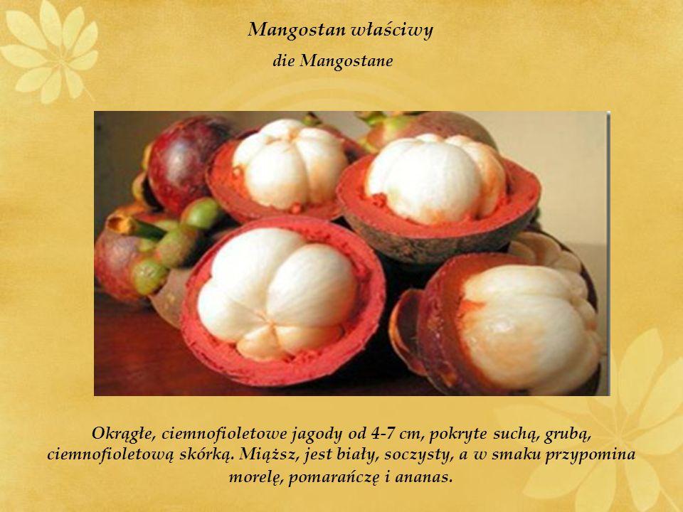 Mangostan właściwy die Mangostane