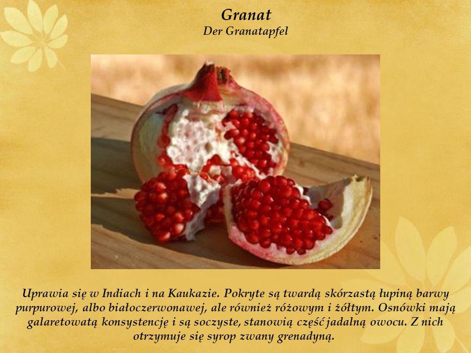 Granat Der Granatapfel