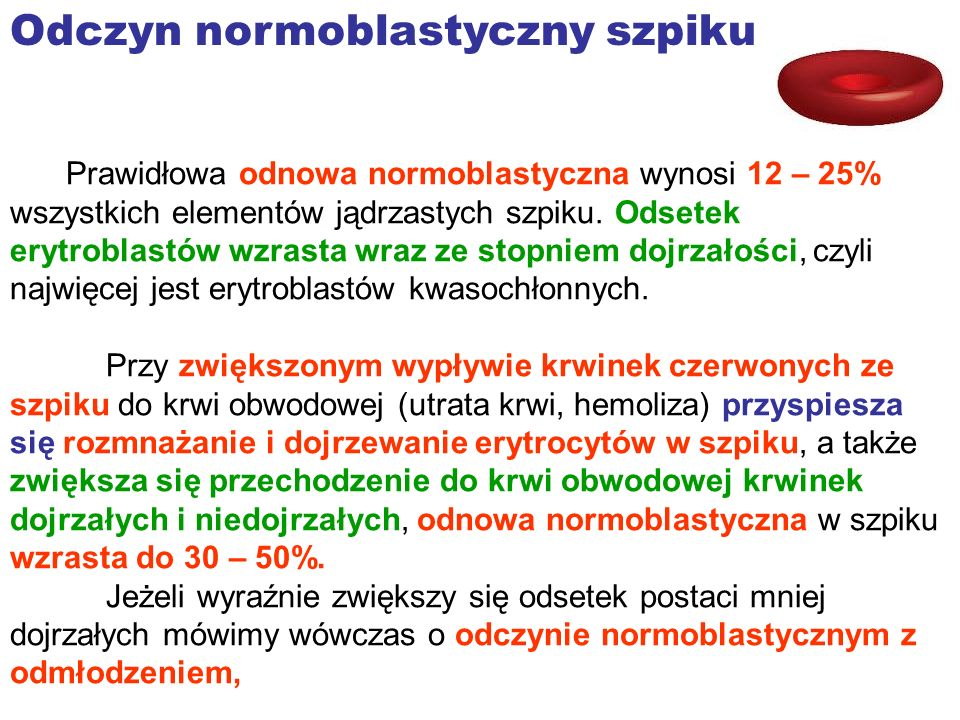 Odczyn normoblastyczny szpiku