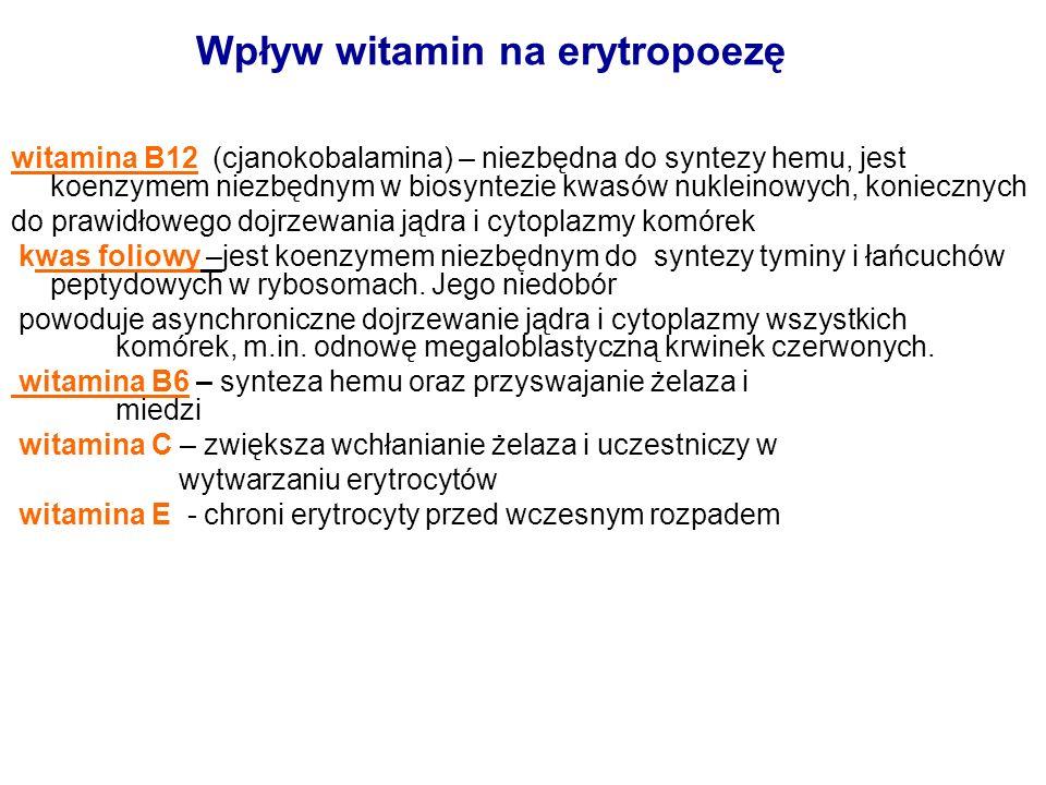 Wpływ witamin na erytropoezę
