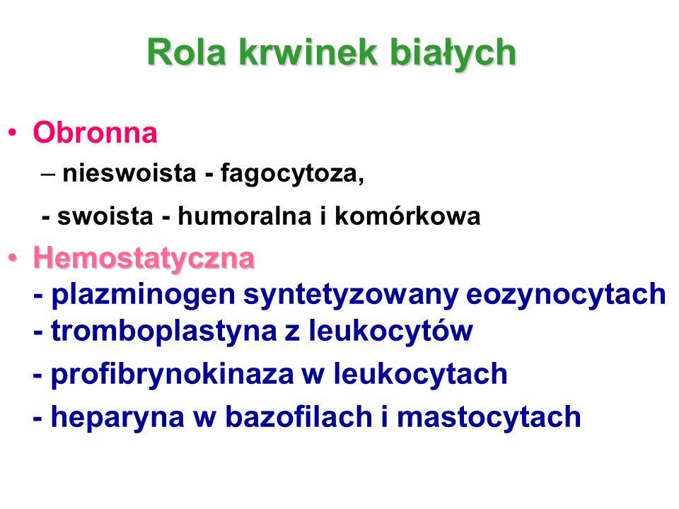 Rola krwinek białych Obronna - swoista - humoralna i komórkowa