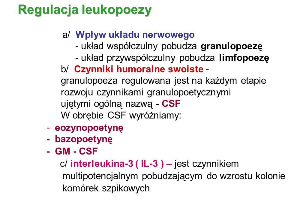 Regulacja leukopoezy a/ Wpływ układu nerwowego