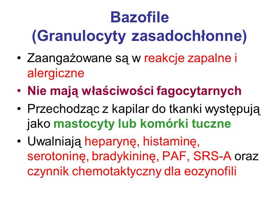 Bazofile (Granulocyty zasadochłonne)
