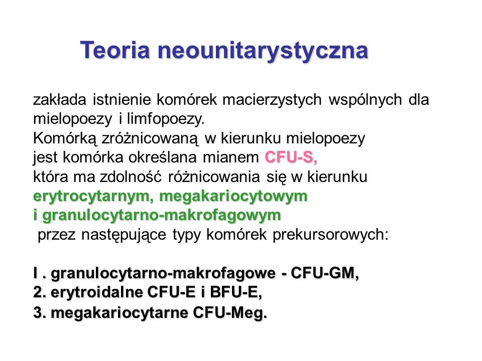 Teoria neounitarystyczna