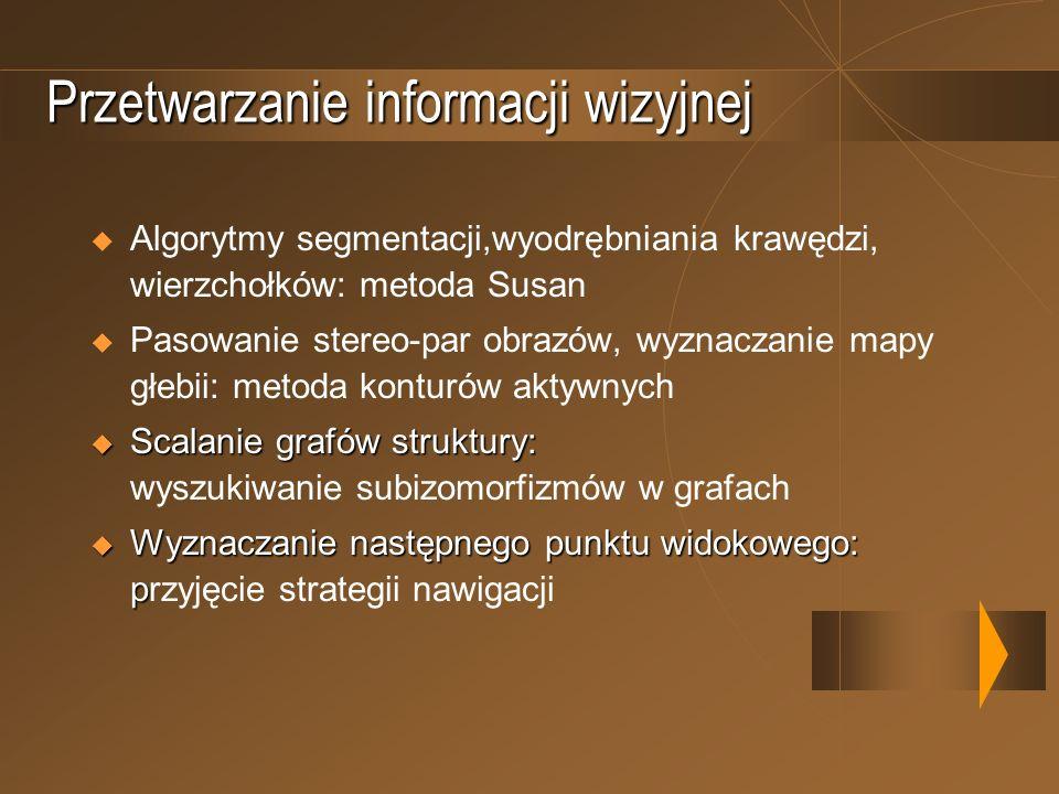 Przetwarzanie informacji wizyjnej