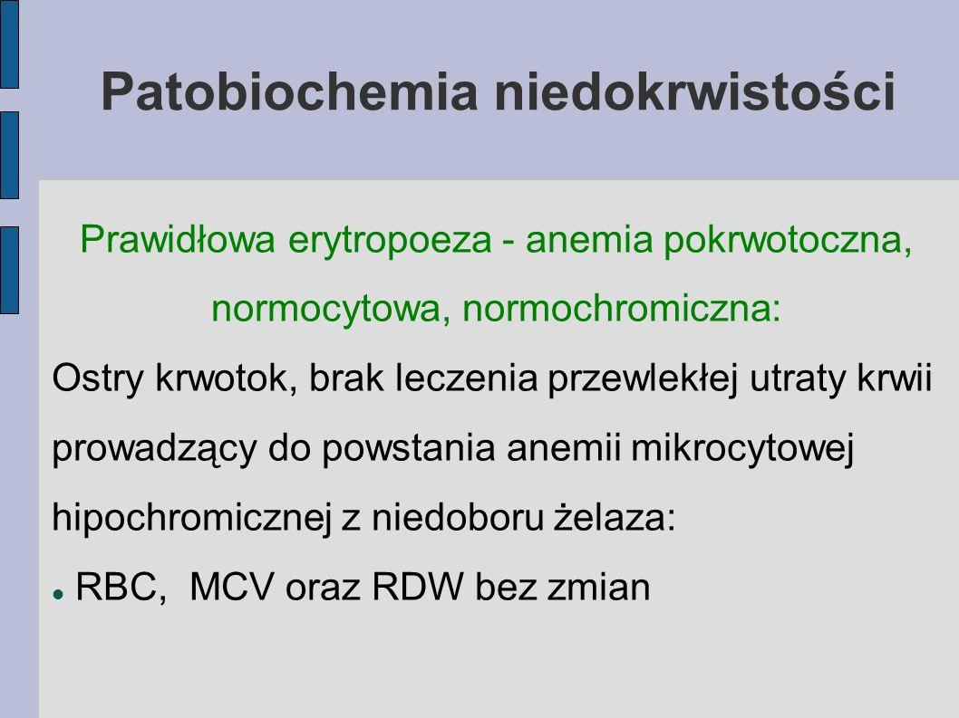 Patobiochemia niedokrwistości