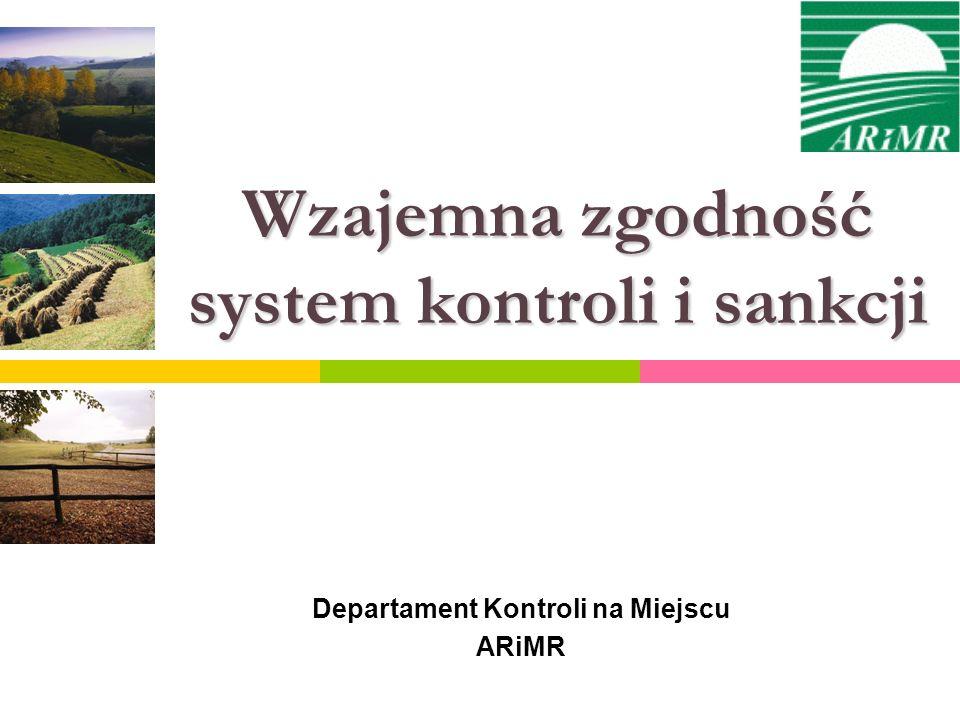 Wzajemna zgodność system kontroli i sankcji