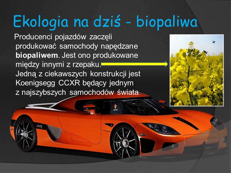 Ekologia na dziś - biopaliwa