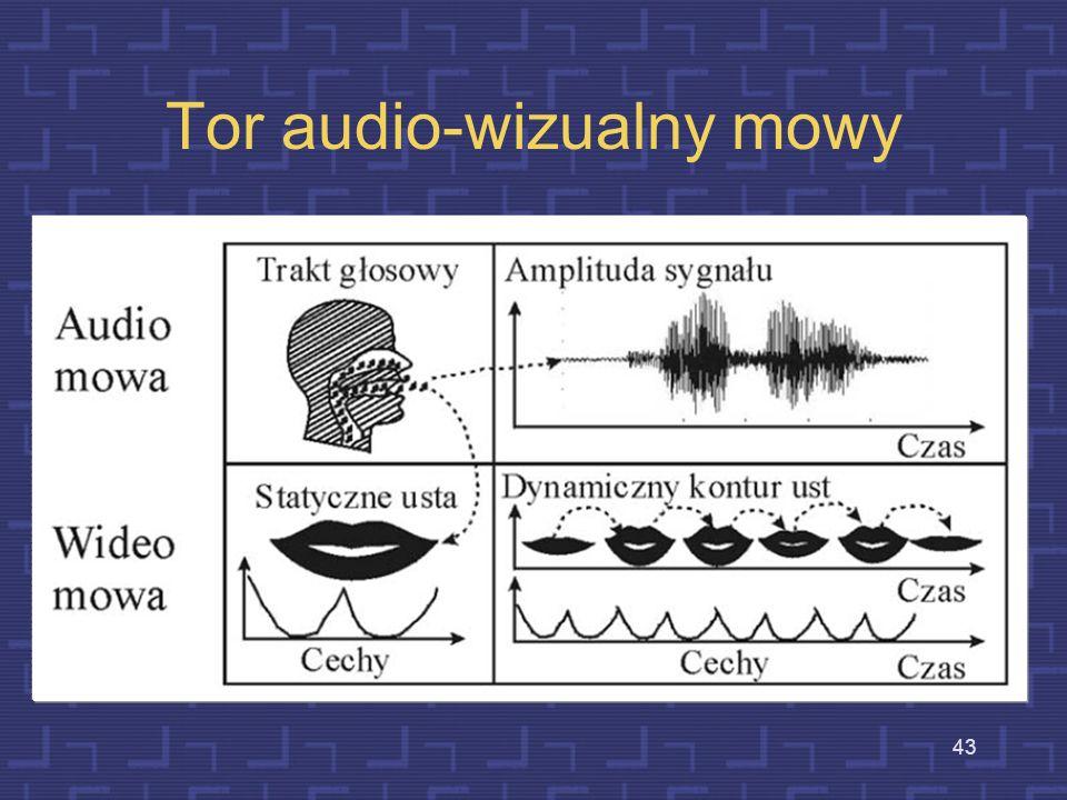 Tor audio-wizualny mowy