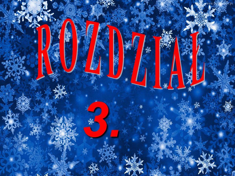 R O Z D Z I A Ł 3.