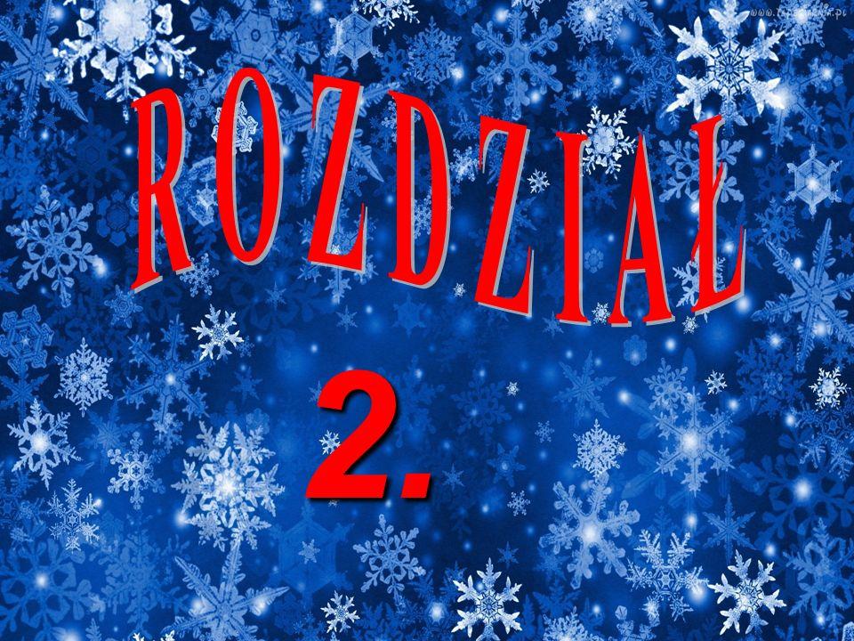 R O Z D Z I A Ł 2.