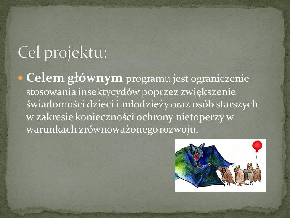 Cel projektu: