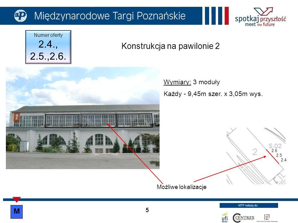 Konstrukcja na pawilonie 2