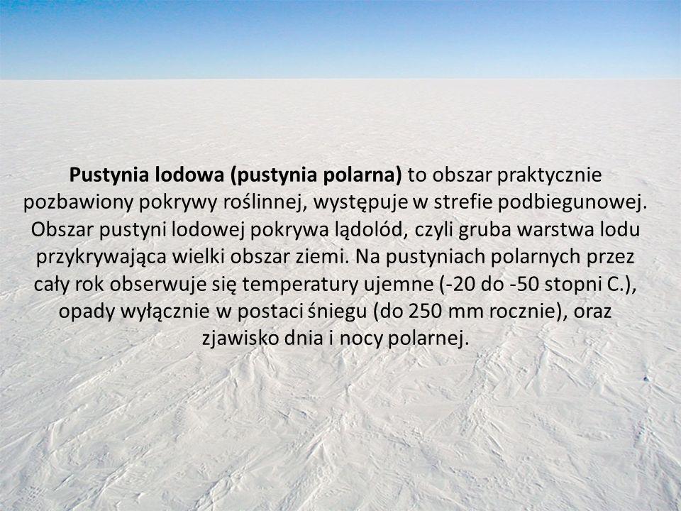 Pustynia lodowa (pustynia polarna) to obszar praktycznie pozbawiony pokrywy roślinnej, występuje w strefie podbiegunowej.