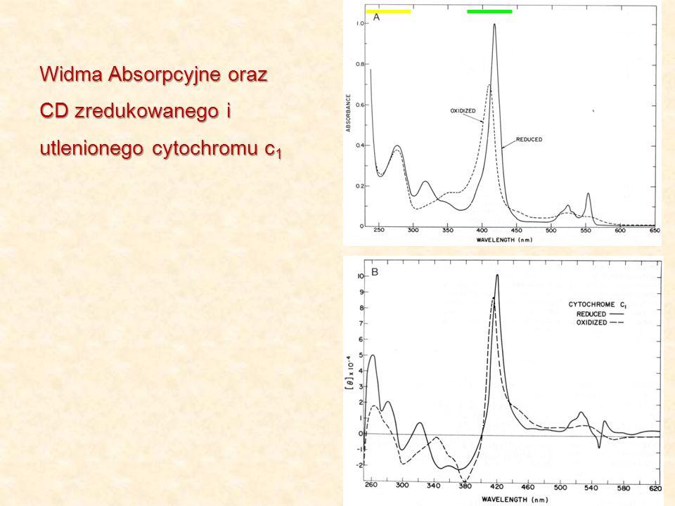 Widma Absorpcyjne oraz CD zredukowanego i utlenionego cytochromu c1
