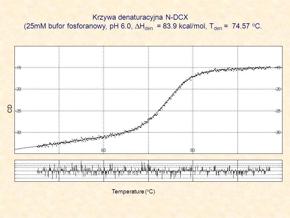 Krzywa denaturacyjna N-DCX