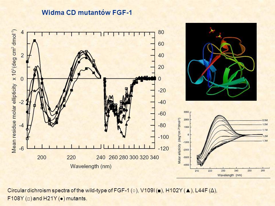 Widma CD mutantów FGF-1 Circular dichroism spectra of the wild-type of FGF-1 (○), V109I (■), H102Y (▲), L44F (Δ),
