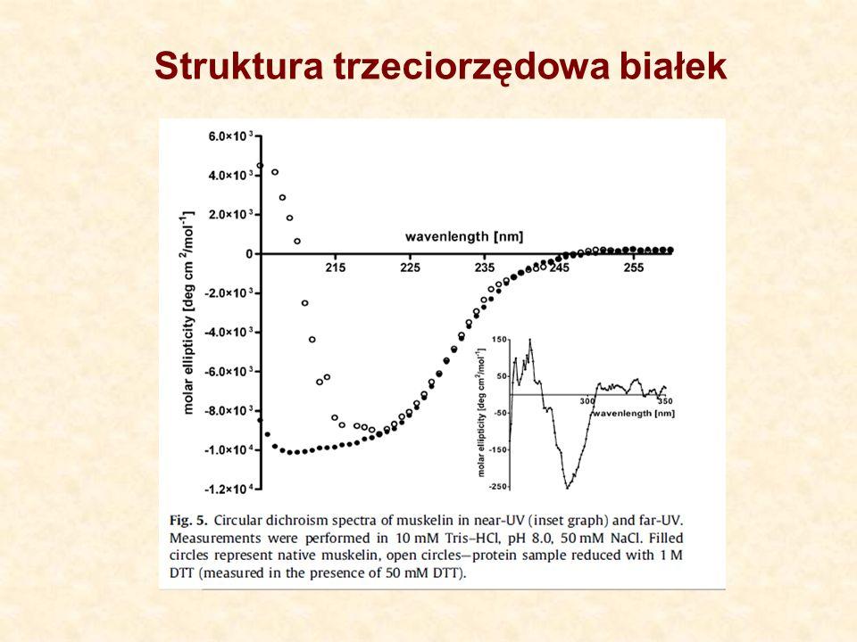 Struktura trzeciorzędowa białek