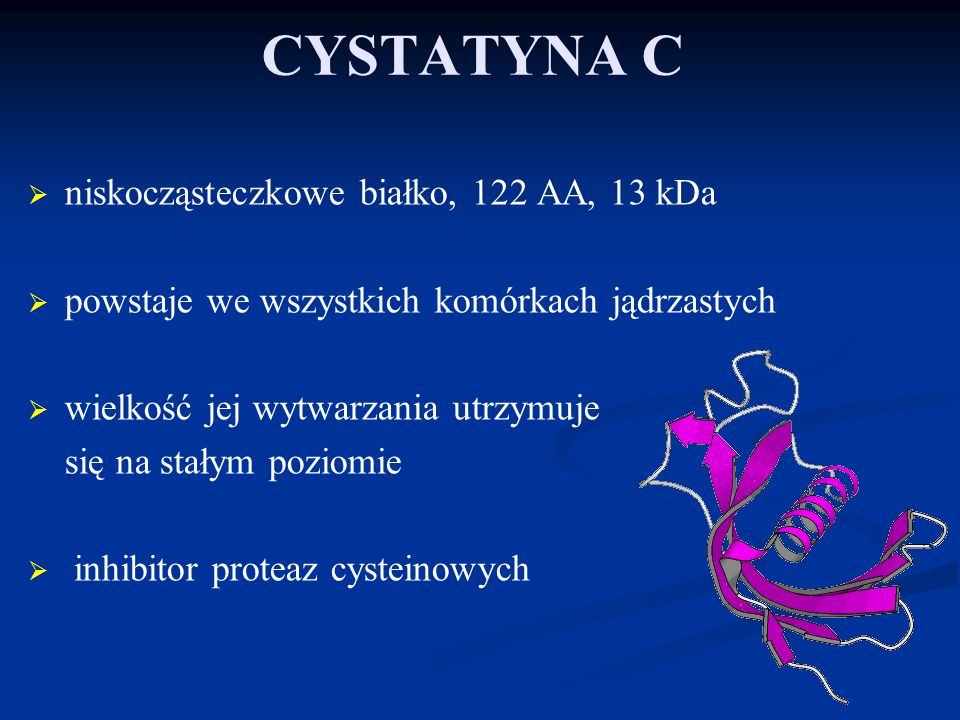 CYSTATYNA C niskocząsteczkowe białko, 122 AA, 13 kDa