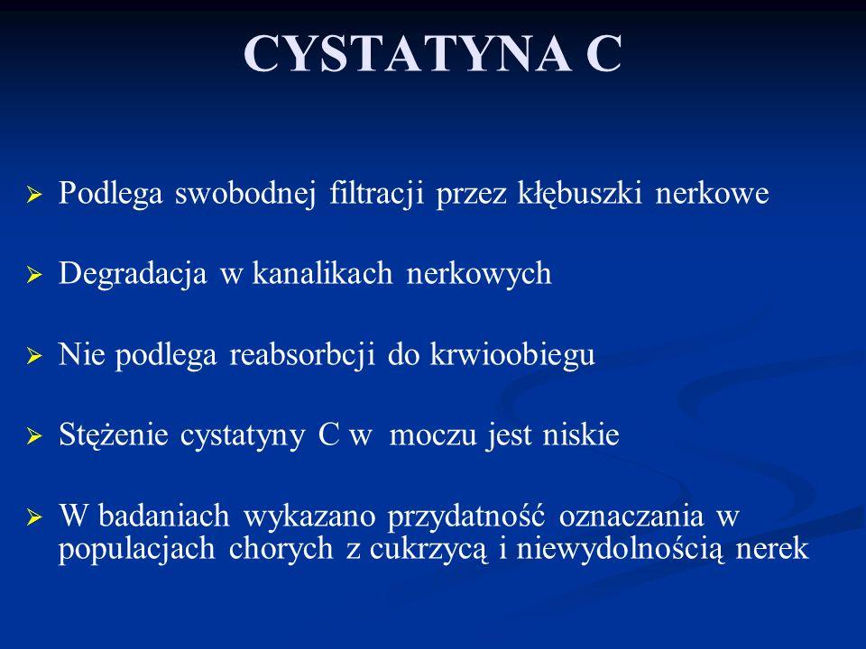 CYSTATYNA C Podlega swobodnej filtracji przez kłębuszki nerkowe
