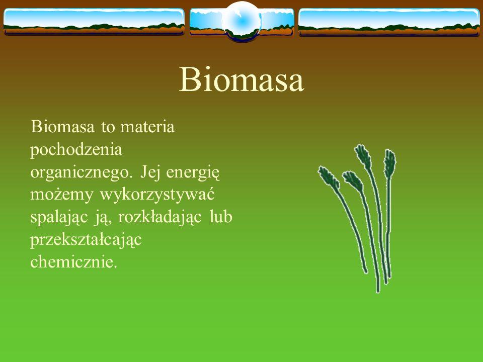 Biomasa Biomasa to materia pochodzenia organicznego.