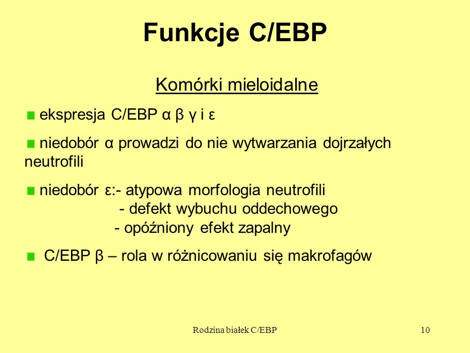 Funkcje C/EBP Komórki mieloidalne ekspresja C/EBP α β γ i ε