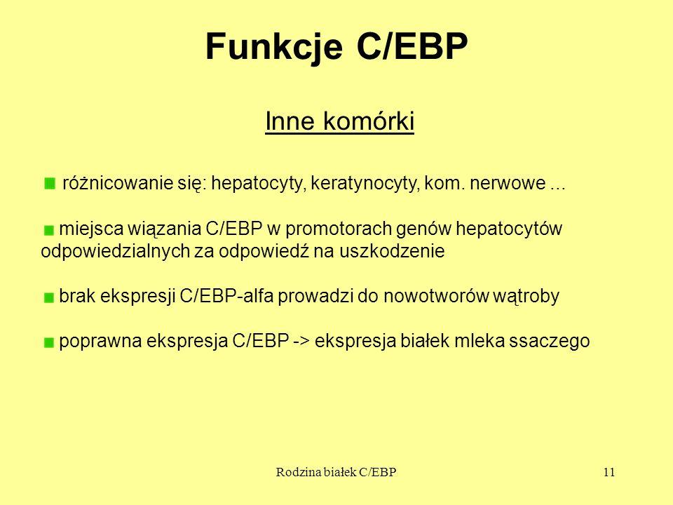 Funkcje C/EBP Inne komórki