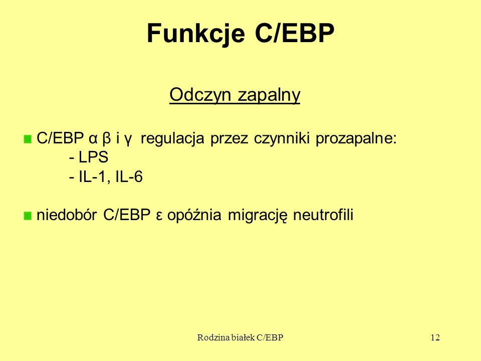 Funkcje C/EBP Odczyn zapalny