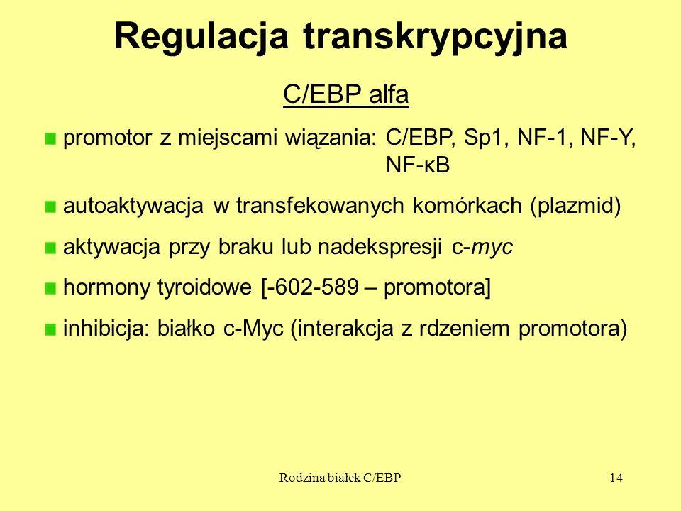 Regulacja transkrypcyjna