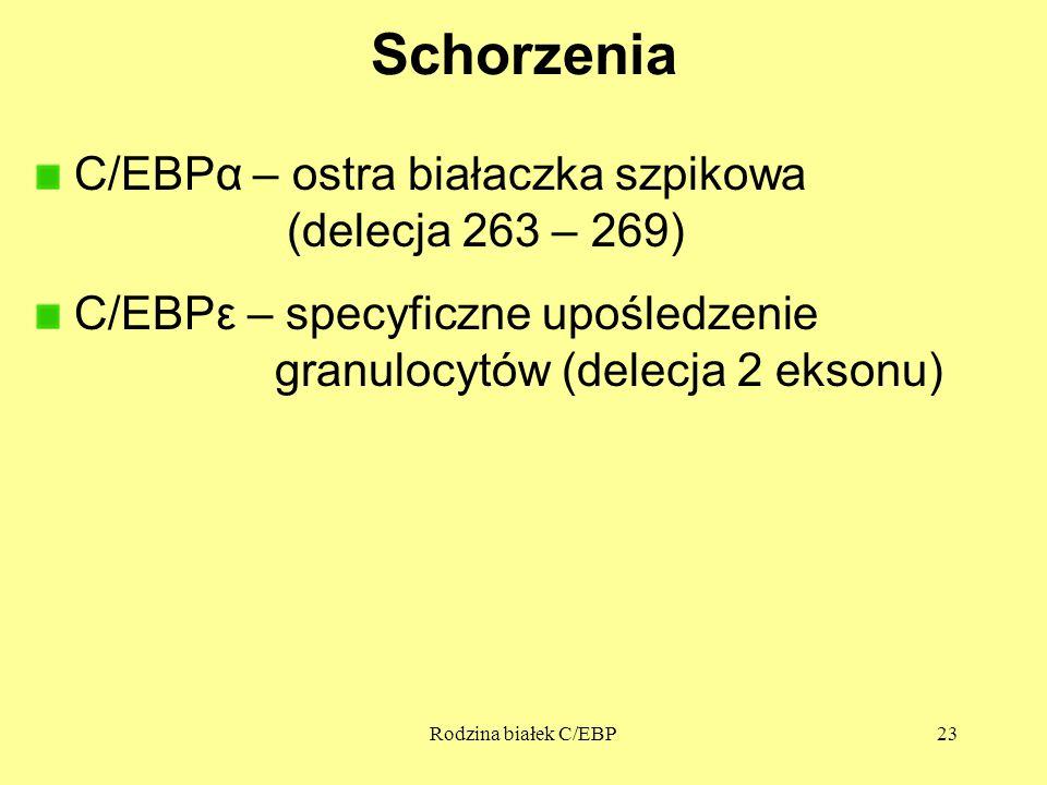 Schorzenia C/EBPα – ostra białaczka szpikowa (delecja 263 – 269)