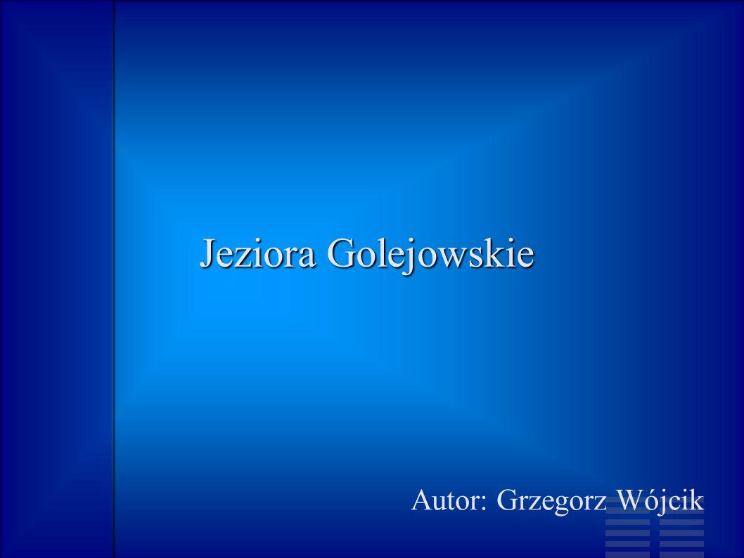 Autor: Grzegorz Wójcik