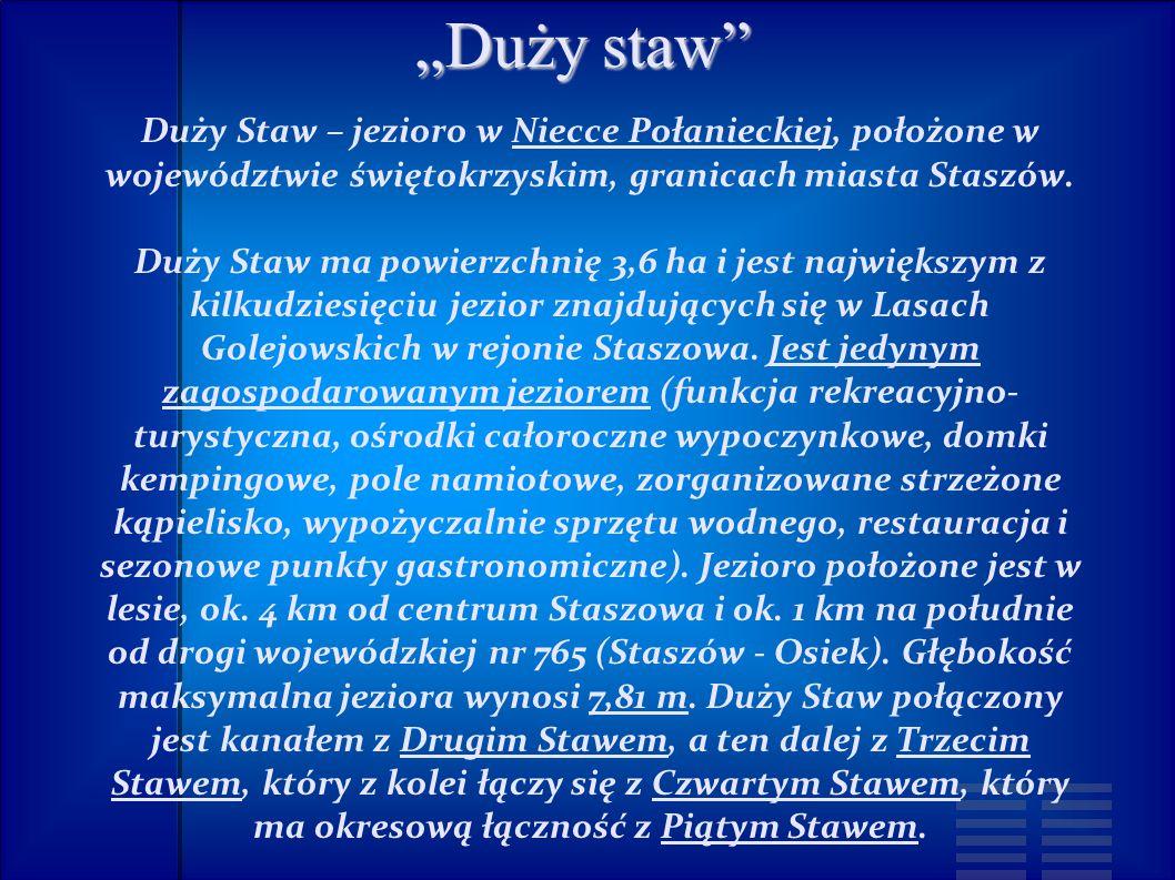 """""""Duży staw Duży Staw – jezioro w Niecce Połanieckiej, położone w województwie świętokrzyskim, granicach miasta Staszów."""
