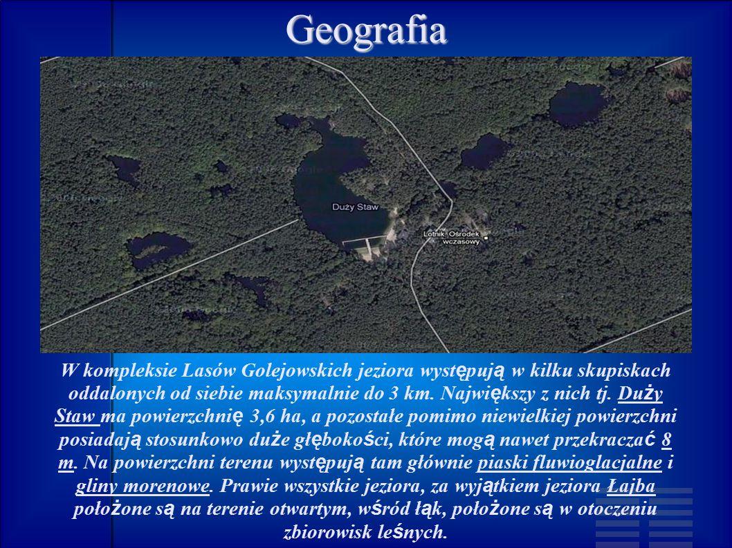 W kompleksie Lasów Golejowskich jeziora występują w kilku skupiskach