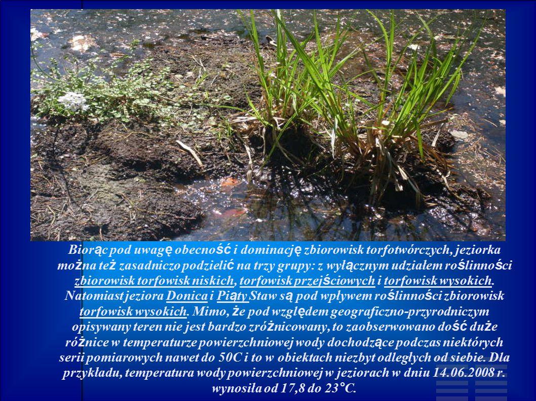 Biorąc pod uwagę obecność i dominację zbiorowisk torfotwórczych, jeziorka można też zasadniczo podzielić na trzy grupy: z wyłącznym udziałem roślinności zbiorowisk torfowisk niskich, torfowisk przejściowych i torfowisk wysokich.