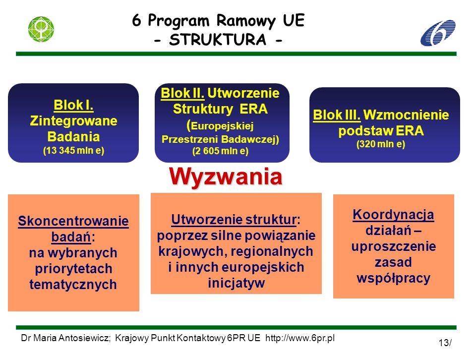 Wyzwania 6 Program Ramowy UE - STRUKTURA -