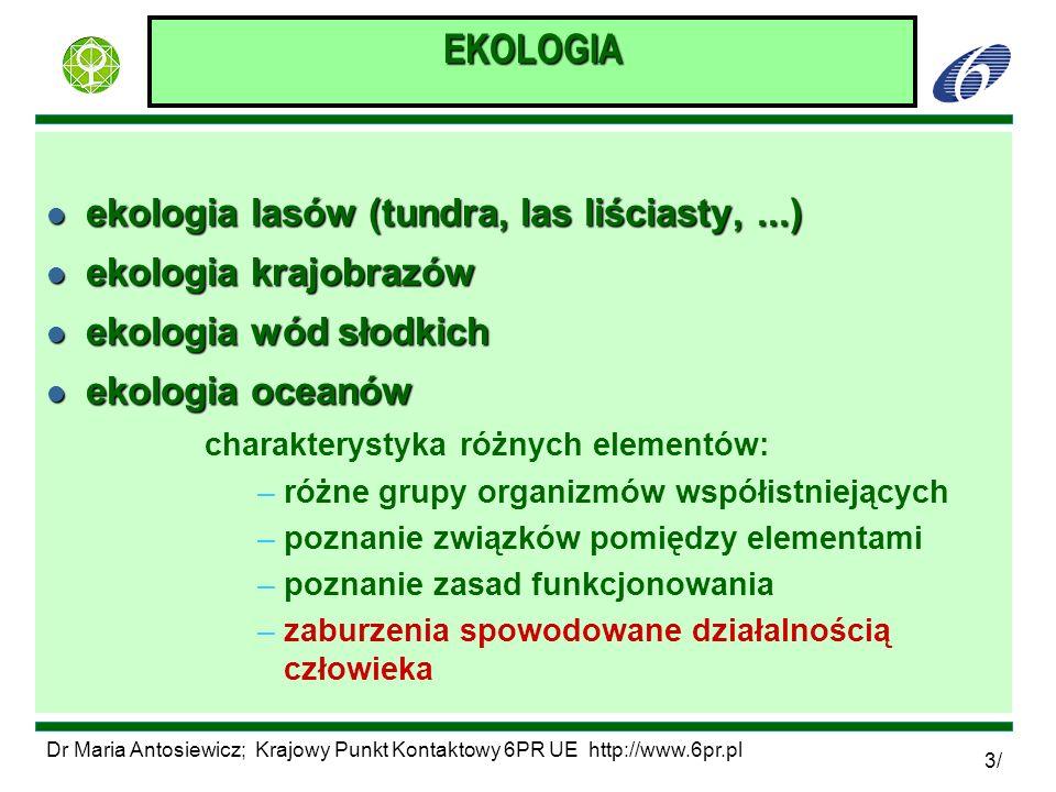 EKOLOGIA ekologia lasów (tundra, las liściasty, ...)