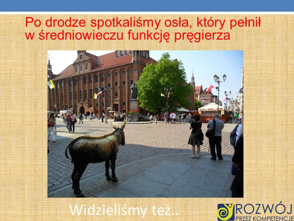 Po drodze spotkaliśmy osła, który pełnił w średniowieczu funkcję pręgierza
