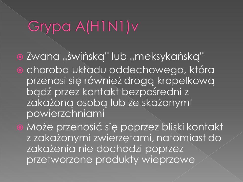 """Grypa A(H1N1)v Zwana """"świńską lub """"meksykańską"""