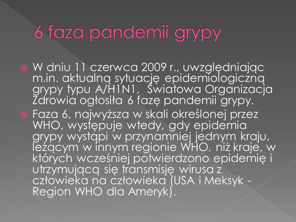 6 faza pandemii grypy