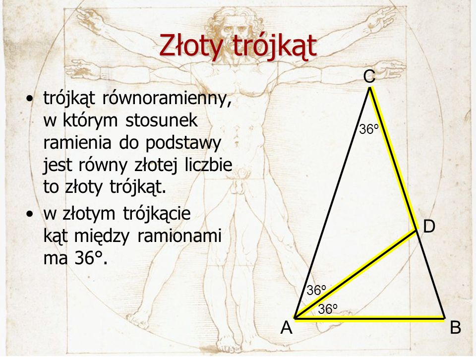 Złoty trójkąt 36º. A. C. B. D. trójkąt równoramienny, w którym stosunek ramienia do podstawy jest równy złotej liczbie to złoty trójkąt.
