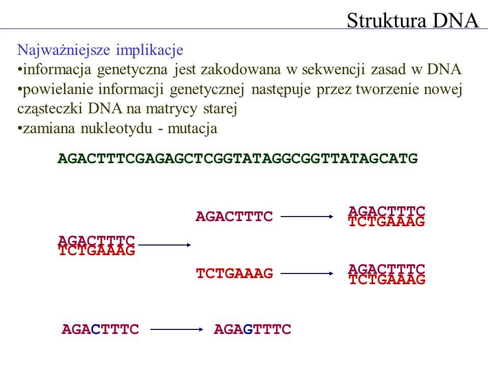 Struktura DNA Najważniejsze implikacje