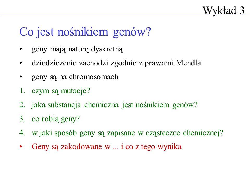 Co jest nośnikiem genów