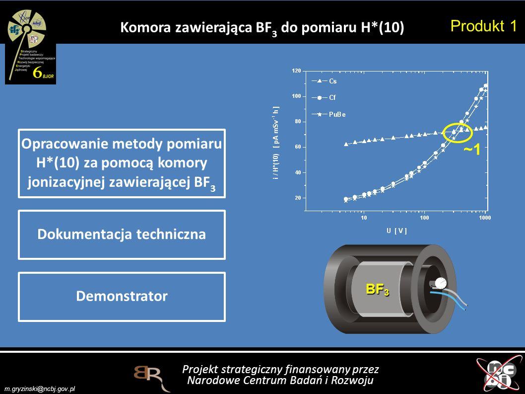 Komora zawierająca BF3 do pomiaru H*(10) Dokumentacja techniczna